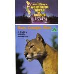 Run, Cougar Run (1972) Movie VHS Disney